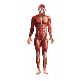 Costume carnevale uomo Halloween Anatomia Umana Uomo Senza Pelle *17022