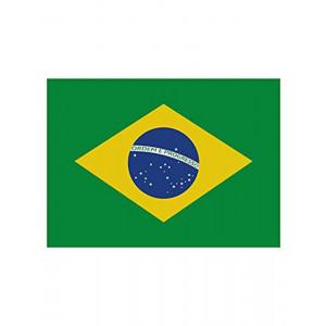 Bandiera Nazionale Brasiliana100x140 Cm Bandiere Brasile PS 09362 Pelusciamo Store Marchirolo