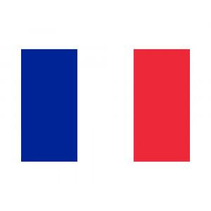 Bandiera Nazionale Francese 100x140 Cm Bandiere Francia PS 09359 Pelusciamo Store Marchirolo